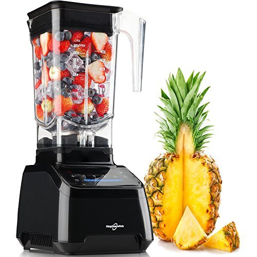 Gift Ideas for New Mom - Hephaestus Smoothie Blender Multi Speeds MultiFunction Mixer Food Processor